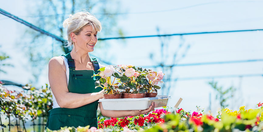 Attractive gardener selecting flowers in a gardening center.